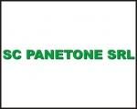 PANETONE SRL
