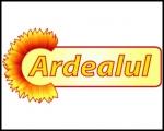 ARDEALUL SA